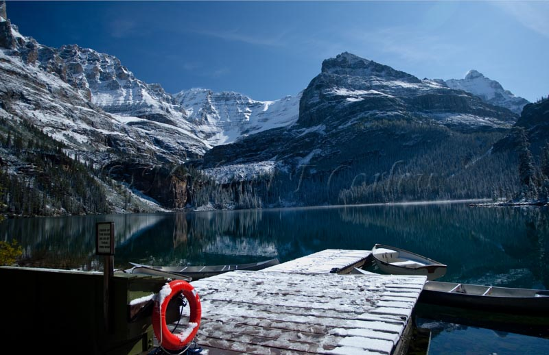 Mountain Lake (Canada) 60