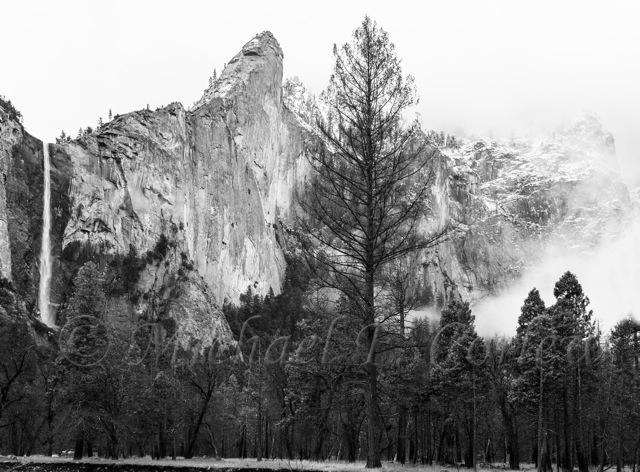 Spring Snow Storm Yosemite NP